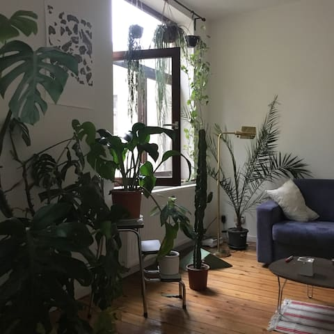 Cosy & « Green » flat in Brussels
