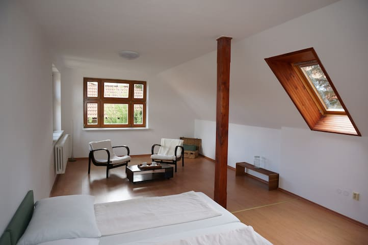 independent attic apartment and shared garden - Pelhřimov - Huis