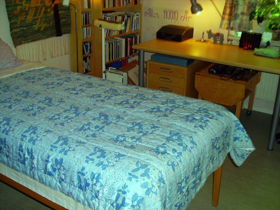 The guest room for one person. The bed is not as wide as it looks in the picture. Size is 90x200 cm.