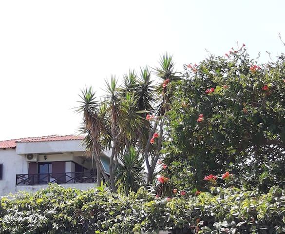 Polychrono Σπίτι με θέα