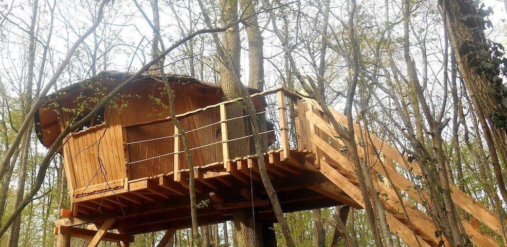 cabane perchée dans les arbres - Witry-lès-Reims - Casa de campo
