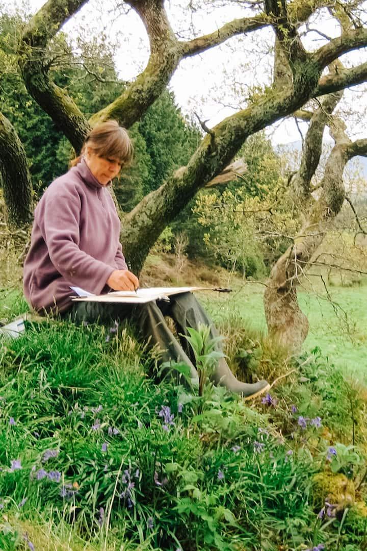 sketching under oak