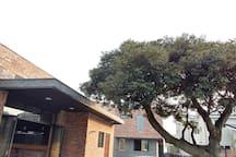 자매민박, (Sorella House)2, 코알라