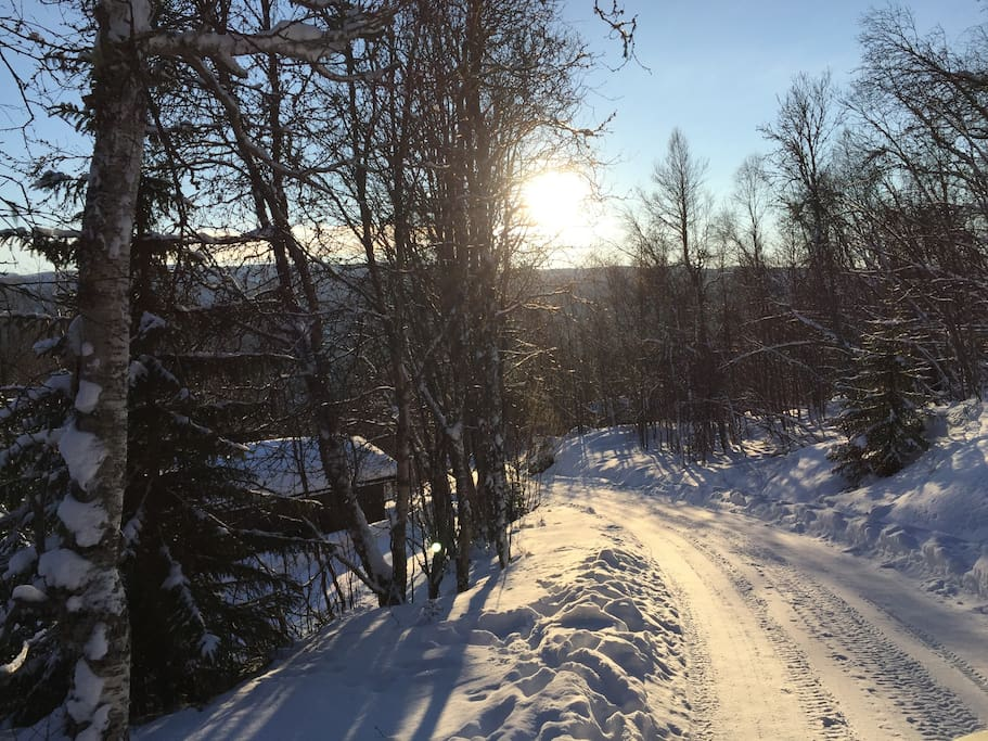 Hågesetvegen is a steep climb from RV7. 10 minutes drive from Geilo Center. Prepared cross-country tracks are close by. 1 hour cross country skiing to Havsdalen ski resort.