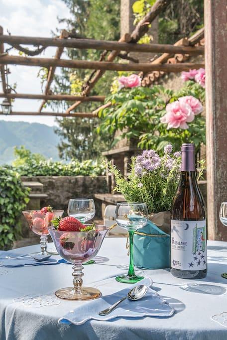 aperitivo in the garden