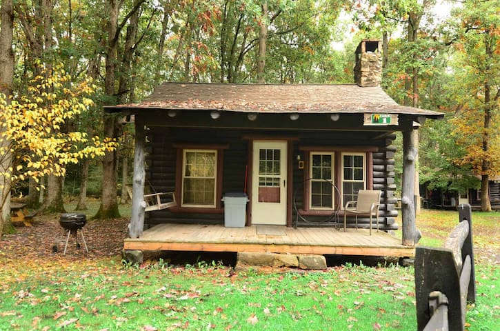 Intimate & inviting cabin near Swallow Falls state park, has a fire pit!