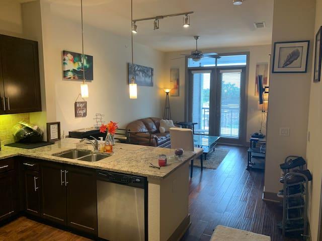 Beautiful, Modern & Cozy Houston apartment