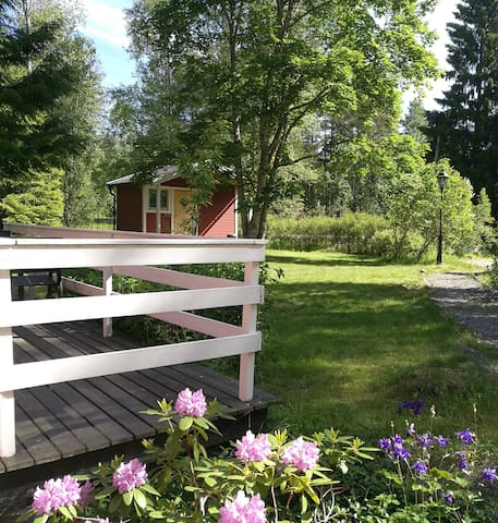 Part of front yard & guesthouse. Yard size 2100 squaremetres.