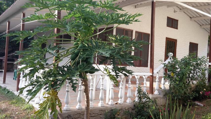 Cabaña nueva 10 minutos de Melgar - Melgar - Kabin