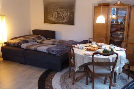 Gemütliche (komplette) Wohnung im Stadtzentrum!! - Neustadt (Hessen) - Apartemen