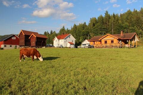 Farmhouse by the river - visit our activity farm!