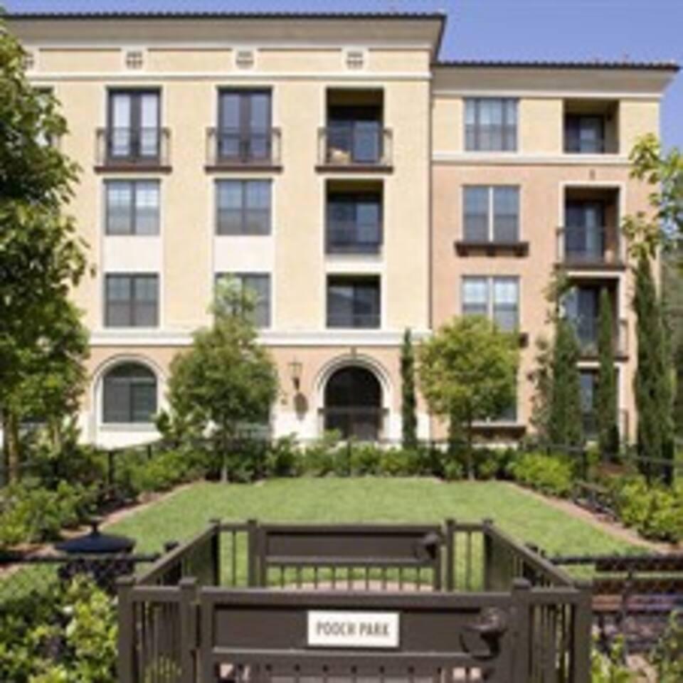 luxury Resort-Style (the Village App in Irvine)