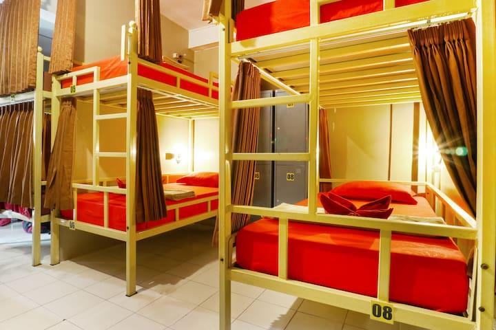 Female Bunk Bed Dorm Ubud Area at Laksita Hostel