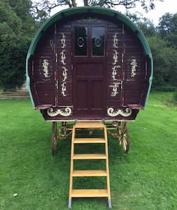 Vardo Caravan in Rural South Devon