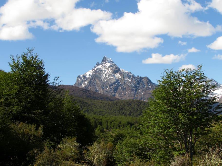 vista al Monte Olivia