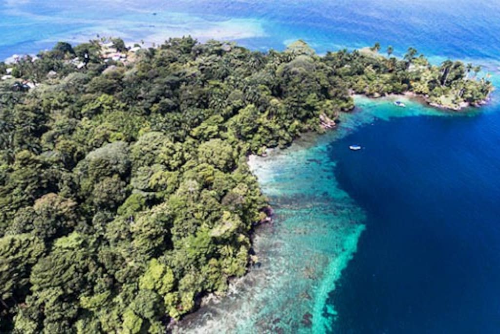 Enjoy privacy on the point, hike the many nature trails, swim on four small beaches and snorkel the reefs that surround Hospital Point.