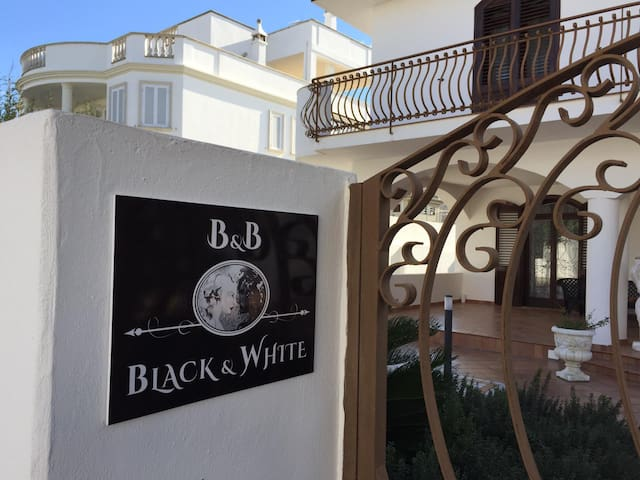 BLACK & WHITE B&B