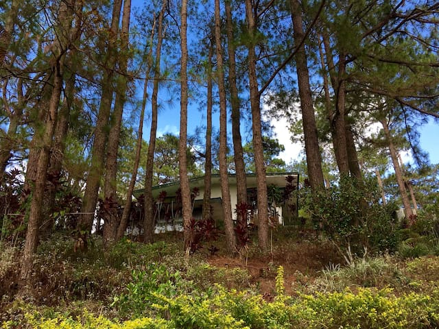 4BR house (surrounded by greens) - Baguio - Casa