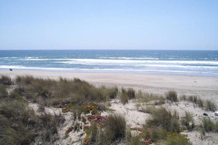 Gorgeous Oceanfront Shorebird Condo Pajaro Dunes