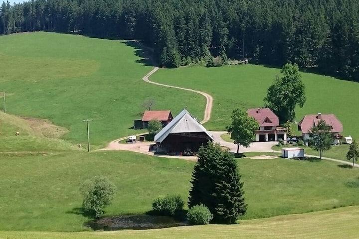 Oberengenbachhof, (Eisenbach), Morgenrot, 60qm, 2 Wohn-/Schlafräume, max. 6 Personen