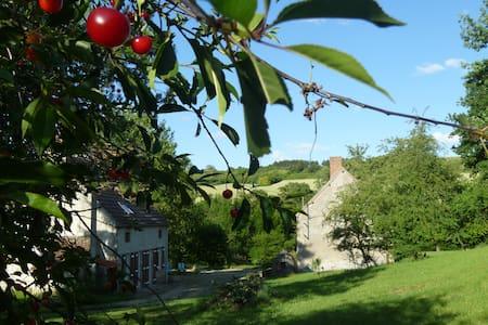 Charming old farmhouse - Fleuriel - Haus