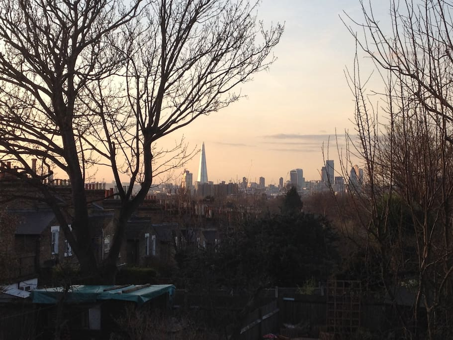 Winter views of local gardens and London beyond.