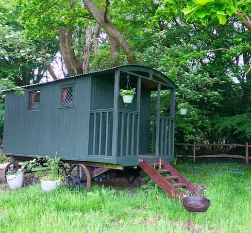 Shepherd's hut, New Forest