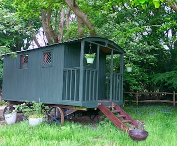 Shepherds hut, New Forest - Burley