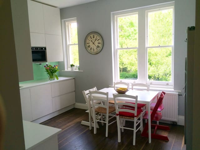 3-bed Victorian family flat - London - Apartment