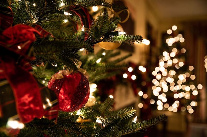 Christmas is around the corner!  Enjoy the colder days in our house - decorated for Christmas as of 1 December.  Warm up in front of the fireplace and take the train to famous Montreux Christmas market.