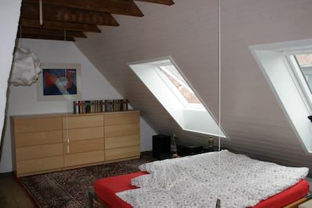 Schönes Dachzimmer in gemütlichem Haus - บาเซิ่ล - ที่พักพร้อมอาหารเช้า