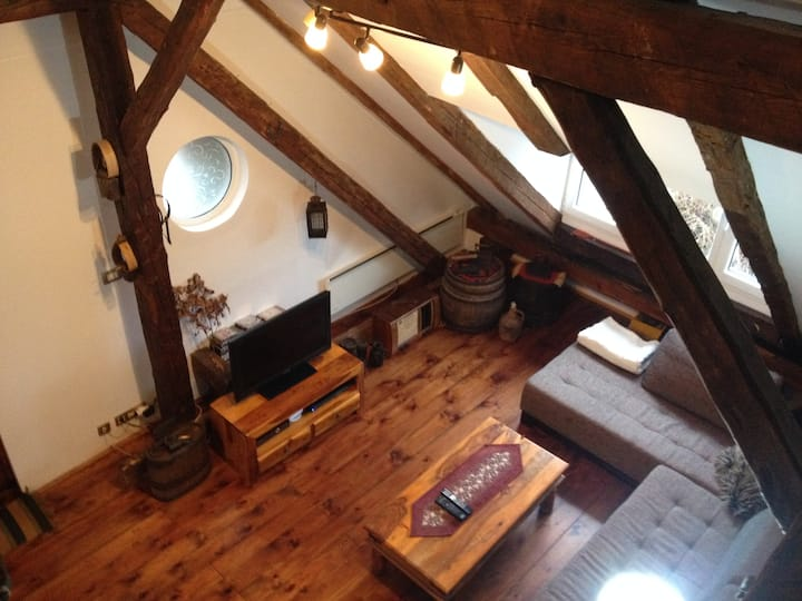 "Large Loft Apartment ""Sibirska"""