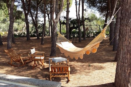 Villa Assunta - Matino - Ferienunterkunft
