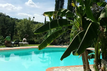 Vintage apt in Tuscany/ pool/ wi-fi - Montevarchi - Apartment