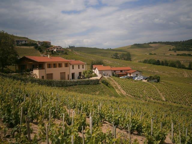Gite de l'Artisan-Vigneron - Rhône-Alpes - Casa