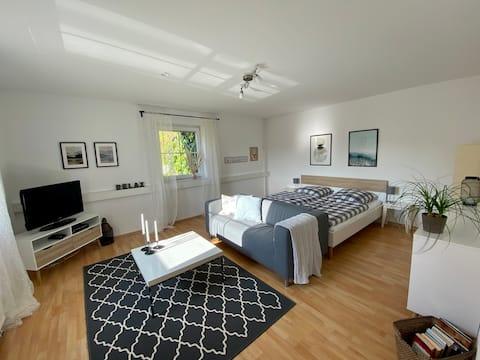 Светл и уютен 1.5 стаен апартамент в Овер