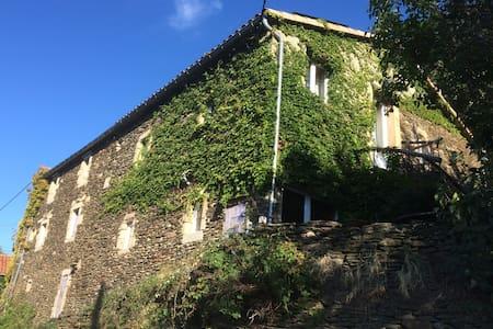 Mas cévenol - Génolhac - House