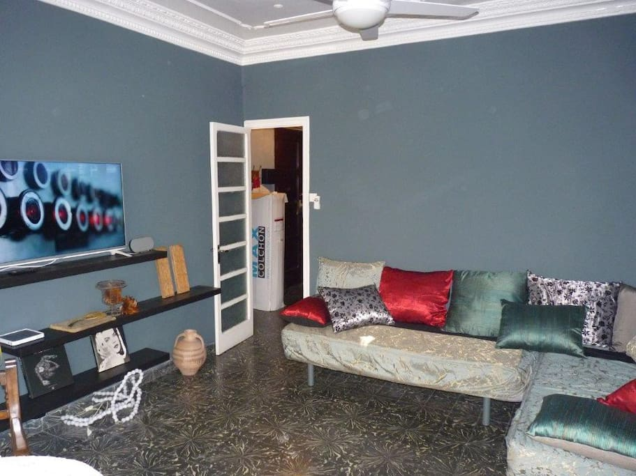 The big living room with authentic old ceiling and lots of light AND you have acces to Netflix