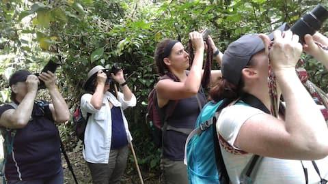Jungle house in  Manu National Park.