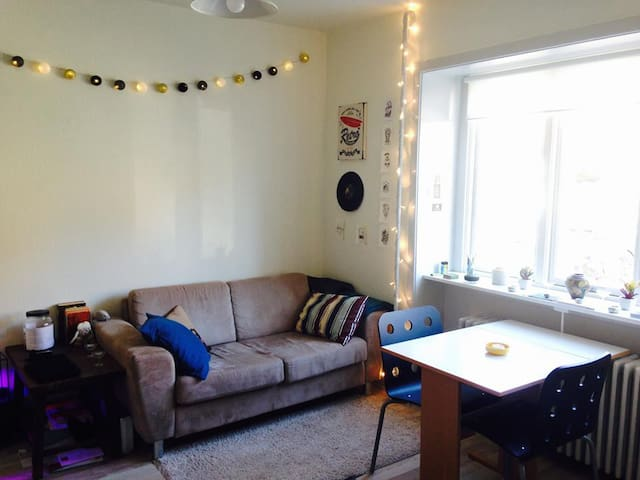 Cozy Apartament for rent - Aalborg - Appartement