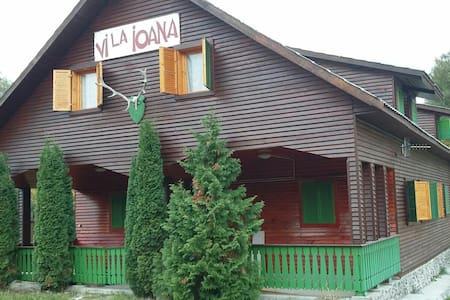 Vila Ioana imprejmuita de râu - Baraolt - Dům