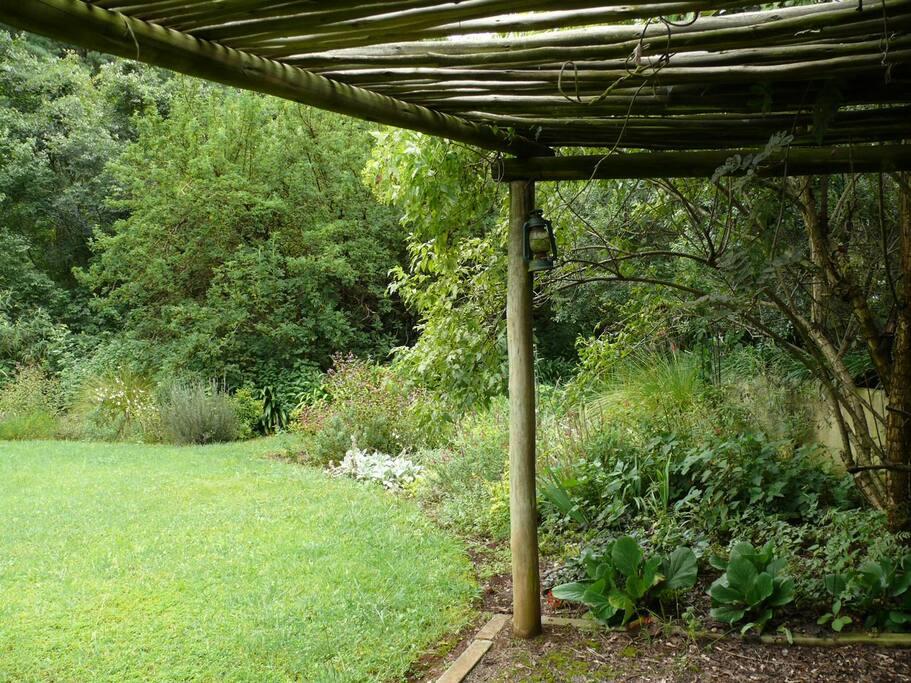Pergola in the garden