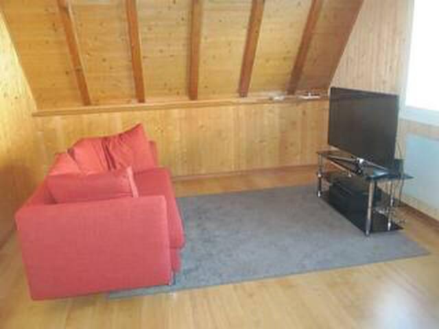 Fernsehzimmer mit ausziehbarem Bettsofa