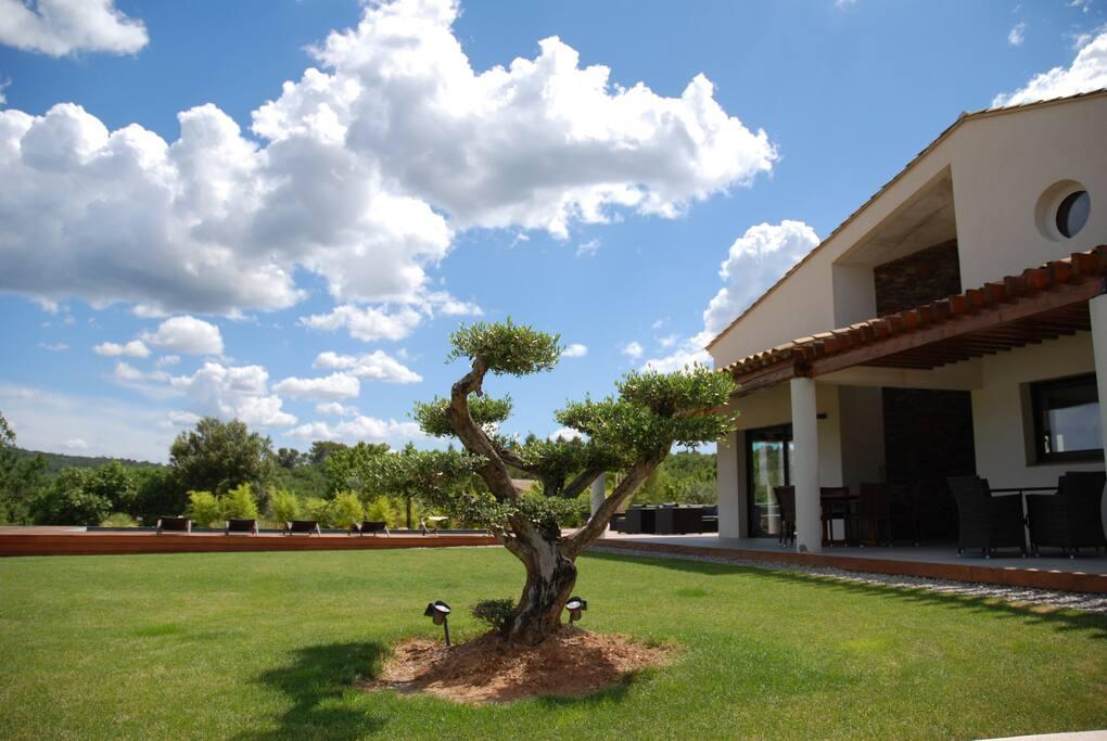Villa Otilia Côté Jardin