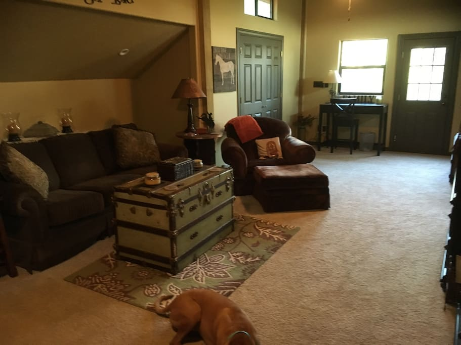 Comfy furniture. That's a sleeper sofa...a good one. The puppy dog is not included but yours is welcome!