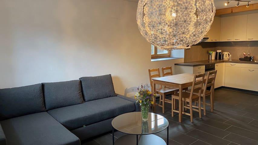 Wohnzimmer mit Bettsofa und Esstisch