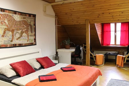 VIKSI Nomad. Very Center / view of the Castle - Liubliana - Bed & Breakfast