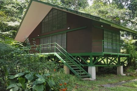 Jungle Cottage - Guapiles - Jiménez