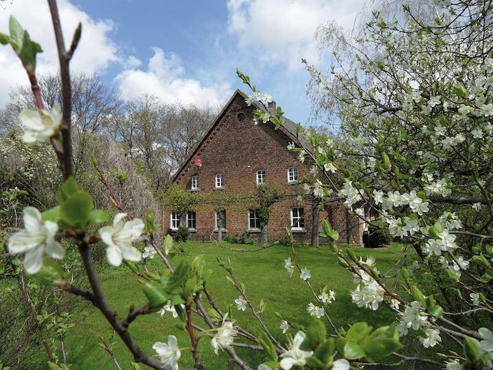 Gästehof Brockum, altes Bauernhaus, großer Garten