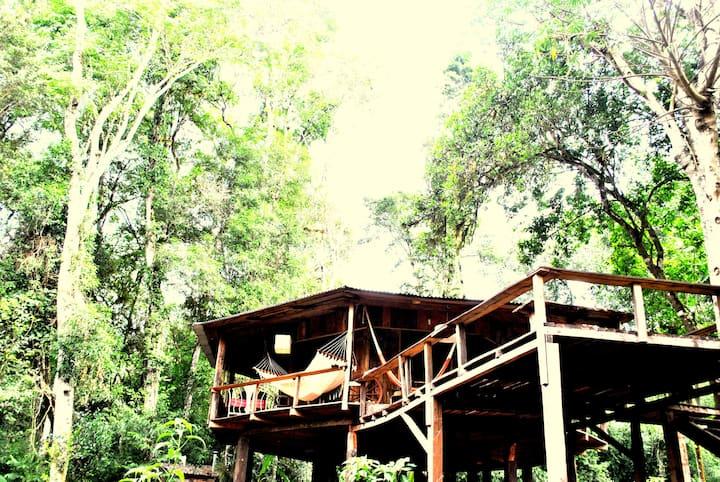 Treehouse en la selva frente al rio